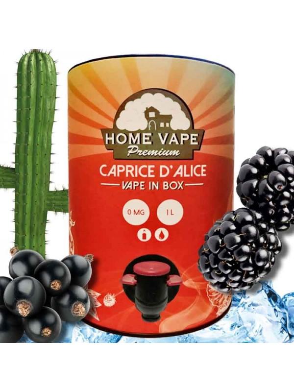 Vape In Box Home Vape Caprice d'Alice 1L